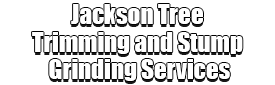 Jackson Tree Trimming and Stump Grinding Services Logo-We Offer Tree Trimming Services, Tree Removal, Tree Pruning, Tree Cutting, Residential and Commercial Tree Trimming Services, Storm Damage, Emergency Tree Removal, Land Clearing, Tree Companies, Tree Care Service, Stump Grinding, and we're the Best Tree Trimming Company Near You Guaranteed!