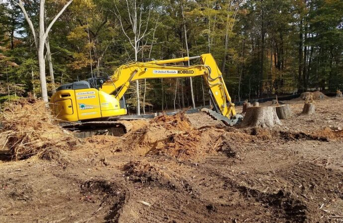 Land Clearing-Jackson Tree Trimming and Stump Grinding Services-We Offer Tree Trimming Services, Tree Removal, Tree Pruning, Tree Cutting, Residential and Commercial Tree Trimming Services, Storm Damage, Emergency Tree Removal, Land Clearing, Tree Companies, Tree Care Service, Stump Grinding, and we're the Best Tree Trimming Company Near You Guaranteed!