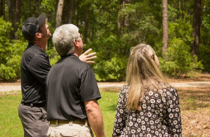Tree Assessments-Jackson Tree Trimming and Stump Grinding Services-We Offer Tree Trimming Services, Tree Removal, Tree Pruning, Tree Cutting, Residential and Commercial Tree Trimming Services, Storm Damage, Emergency Tree Removal, Land Clearing, Tree Companies, Tree Care Service, Stump Grinding, and we're the Best Tree Trimming Company Near You Guaranteed!