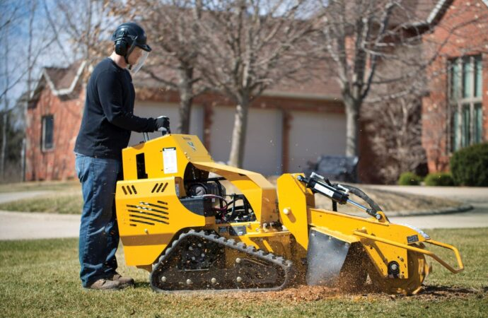 Huntersville-Jackson Tree Trimming and Stump Grinding Services-We Offer Tree Trimming Services, Tree Removal, Tree Pruning, Tree Cutting, Residential and Commercial Tree Trimming Services, Storm Damage, Emergency Tree Removal, Land Clearing, Tree Companies, Tree Care Service, Stump Grinding, and we're the Best Tree Trimming Company Near You Guaranteed!